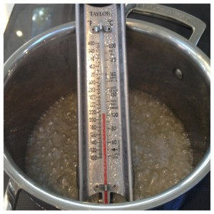 Candy Thermometer and Pan